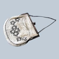 GORGEOUS 1920s Art Deco FRENCH Beaded Purse Evening Bag,Shimmering Silver Grey White Beads, Flapper Era Collectible Antique Purses, Bridal