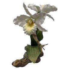 Boehm Porcelain White Cattleya Orchids Figurine