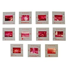 Authentic Vintage Marked Hong Kong Tourism Photography Slides - Set of 11