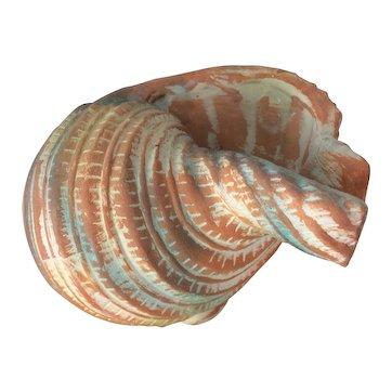 Vintage Terracotta Pottery Shell Planter L 19cm x H 12.2cm x W 16.3cm