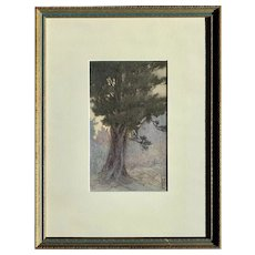 Nelly Littlehale Murphy  (American: 1867-1941) Tree Study at Twilight