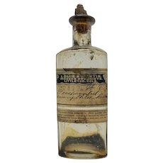 Apothecary Bottle Lewis & Martin Colorado