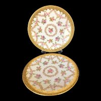 "Set of two 9 ¼"" T&V Limoges France Plates decorated with Gold"