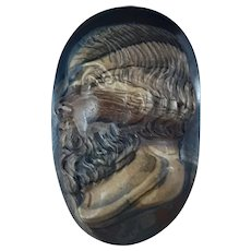 Antique Unmounted Cameo of Socrates Facing Left Tiger's Eye