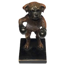 1 Antique Original Rare Franz Bergman Cold Painted Bronze Of A Boxer Boxing Dog
