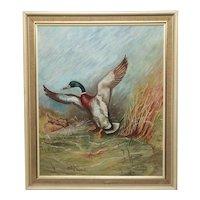 English Oil Painting Circa 1971 Mallard Bird Duck Rising Up W.S.Pickering