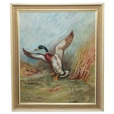 English Oil Painting Circa 1971 Mallard Bird Duck Rising Up W.S.Pickering