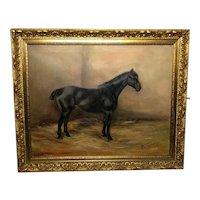Study Black Horse Portrait Signed Alice Mary Burton RBA (1893-1968)