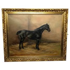 Study Black Horse Portrait Signed Alice Mary Burton RBA (1893-1968)