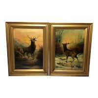 Pair Antique Oil Paintings Portrait Stags Scottish Glen Highlands