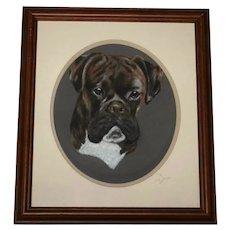 English Pastel Drawing Bulldog Animal Portrait Signed Sue James