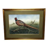 "English 20th Century Watercolour Painting ""Cock Pheasant"" Signed Gordon C Turton"