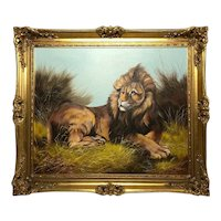 English School 20th Century Art Oil Painting Savanna Recumbent Lion Portrait