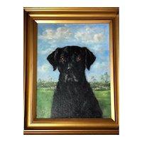 British Art 20th Century Oil Painting Black Dog Labrador Retriever Portrait