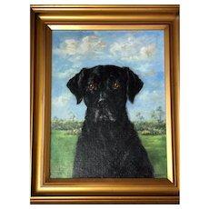 Fine Art Vintage Mid 20th Century Oil Painting Black Dog Labrador Retriever British Artist