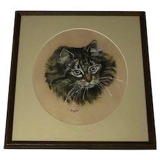 Original Art Circa 1960's Pastel Drawing Cat Portrait Biggles Signed Julia
