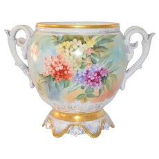 Limoges Jardiniere Planter Vase Rare Mold Multi Phlox Flowers
