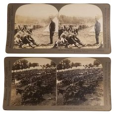 2 Real photo stereoview cards with a British calvary theme