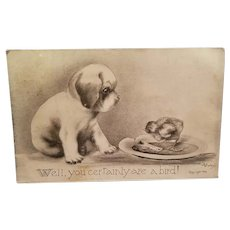 Signed V. Colby postcard copyrighted 1909 featuring puppy and chick