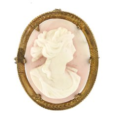 Victorian conch Shell Cameo in 10 kt Gold Frame, Brooch / Pendant