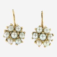 Antique 14kt Yellow gold Pearl Cluster, Flower Motif Earrings.