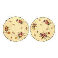"Antique CAULDON CHINA England 9"" Luncheon Plates Floral Posies Decoration 2 PCS Circa 1905-1920"