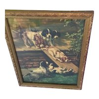 Old Framed print of Dogs Playing