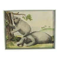 Handcolored Bookplate of Elephants 19th century