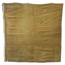 James Mott Throop: Civil War Assistant Surgeon: 176th and 48th NY Infantry Ambulance Flag