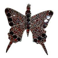 Bohemian Garnet Butterfly Pin, circa 1890-1910