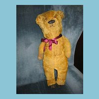 Rare Mohair Teddy Bear Formerly Early 1900s Electric Eye Bear