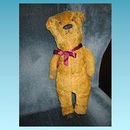 Rare Mohair Teddy Bear Formerly Early 1900s Electric Eye Bear