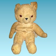 Vintage Knickerbocker Jointed Teddy Bear Needs a Home