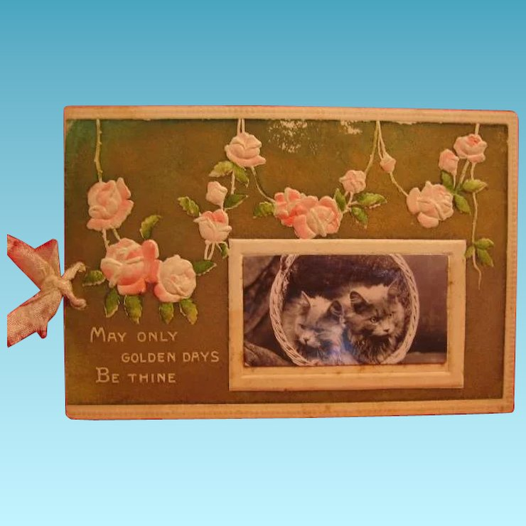 Wonderful Early 1900s Christmas Card with Real Kitten Photo Insert ...