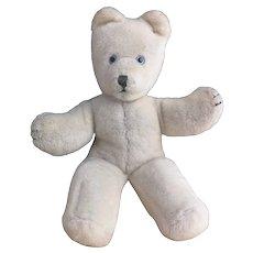 Vintage 1950s Pedigree Teddy bear