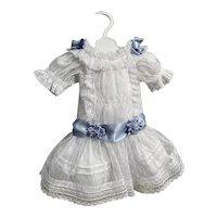 Netting Dress with matching slip
