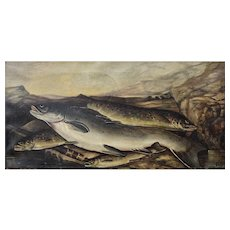 Early English Oil Painting showing Trout and Salmon