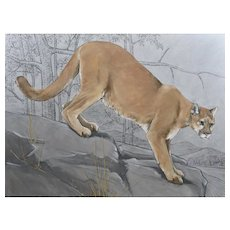 Original oil painting of a Puma or Mountain Lion