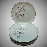 Vintage (9) Universal Ballerina 10 Inch Dinner Plates Straw Flower Pattern 1934-56 Good Condition