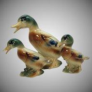 Vintage Royal Copley Mother Mallard Duck & Baby Mallard Ducks 1939-1960 Good Condition