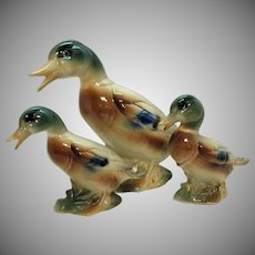 Vintage Royal Copley Mother Mallard Duck & Baby Mallard Ducks 1939-1960 Good Condition