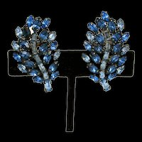 Multi Shades of Blue Rhinestone Earrings