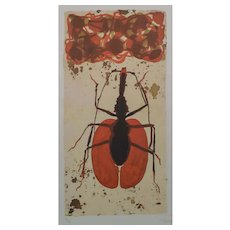 Lithograph of a Malaysian Ghost  Walker Ant