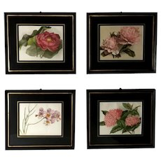 "Victorian English Set of Four Frames with ""Botanical"" Prints 1880"