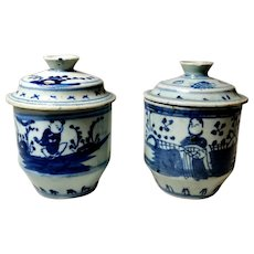 18th Century Pair of Ginger Jars Chinese Porcelain Decorations in Cobalt Blue