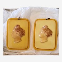 Vintage Rare Celluloid Shade Pulls w Ladies Faces / Pair of Butterscotch Shade Pulls W Original Box