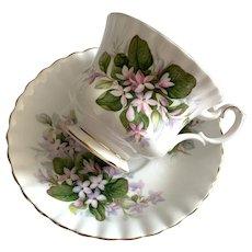 Royal Albert Bone China Tea Cup & Saucer - Mayflower Pattern