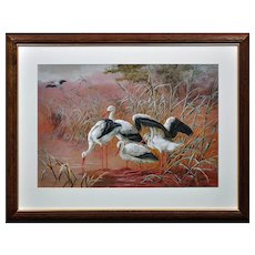 Harry Bright 1846 - 1895. English. White Storks. Watercolour. Framed.
