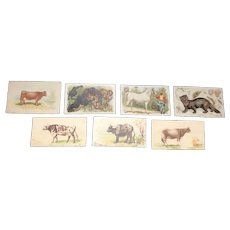 Set of 7 Trade Cards with Animals