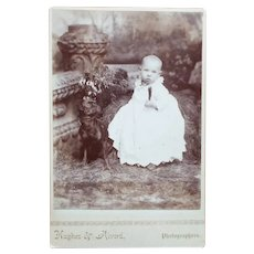 Cabinet Card, Baby and Dog